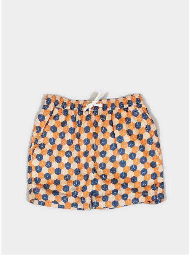 Cubist Printed Swim Shorts