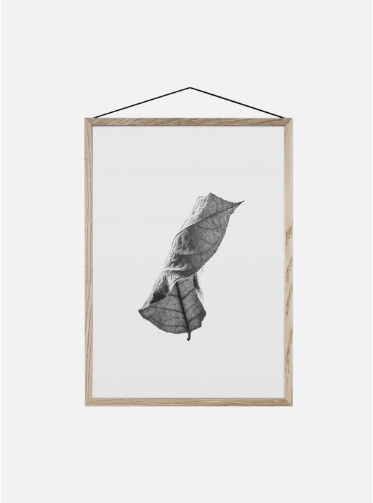 Floating Leaves 01 Print by Norm Architects