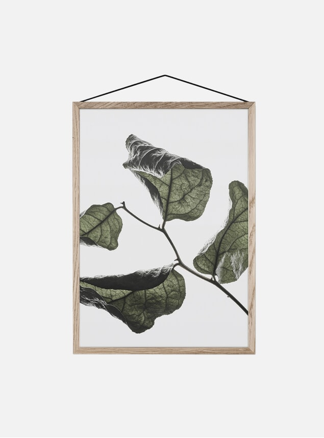 Floating Leaves 03 Print by Norm Architects