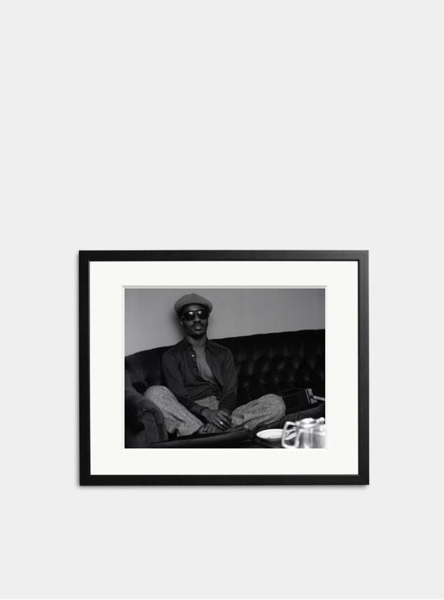 Stevie Relaxing Photograph